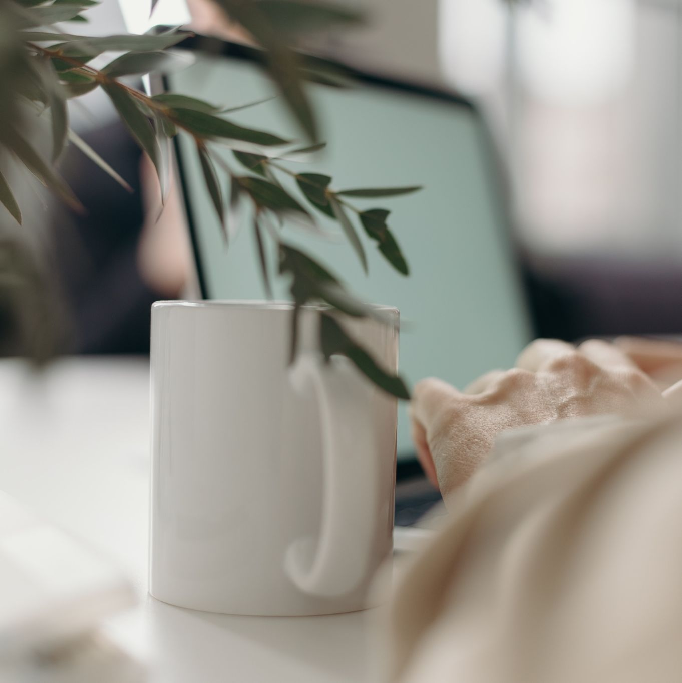 notebook plant koffie vierkant natuurlijke groei